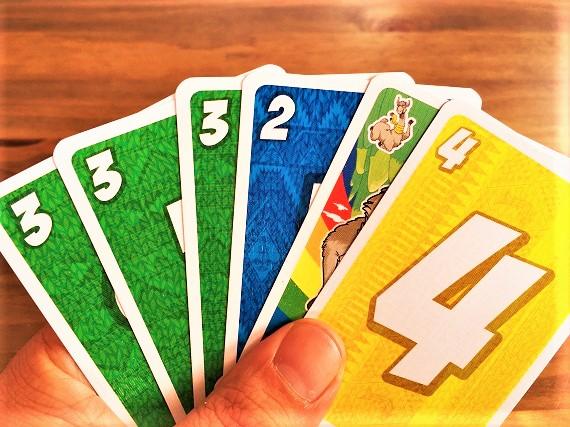 Lama - Kartenhand